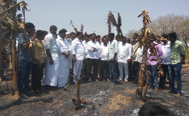 Kethireddy Venkatrami Reddy Slams TDP leaders - Sakshi