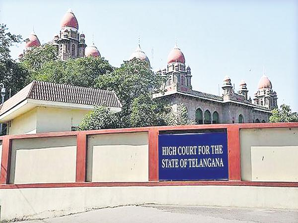 High Court Comments On Local Body Election process - Sakshi