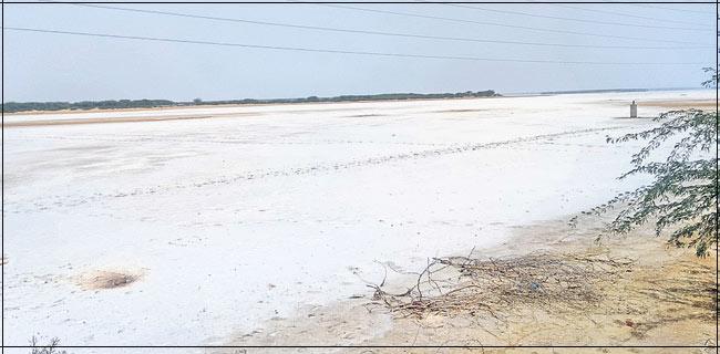Salt Covered Pulicat Lake - Sakshi