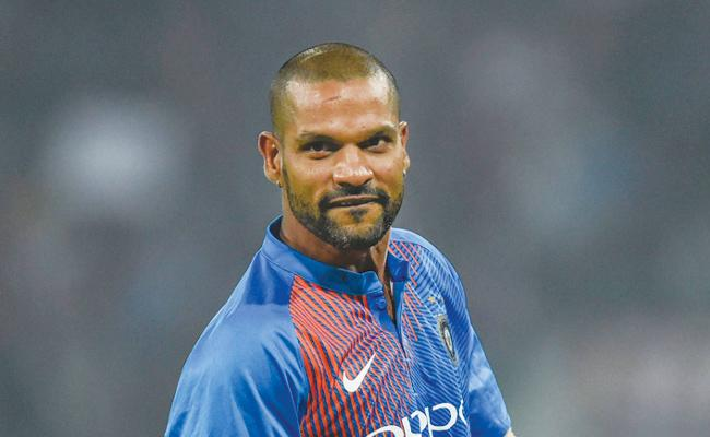 India have strong side for ICC 2019 World Cup: Shikhar Dhawan - Sakshi