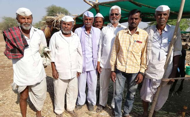 Farmers feel Despondent - Sakshi