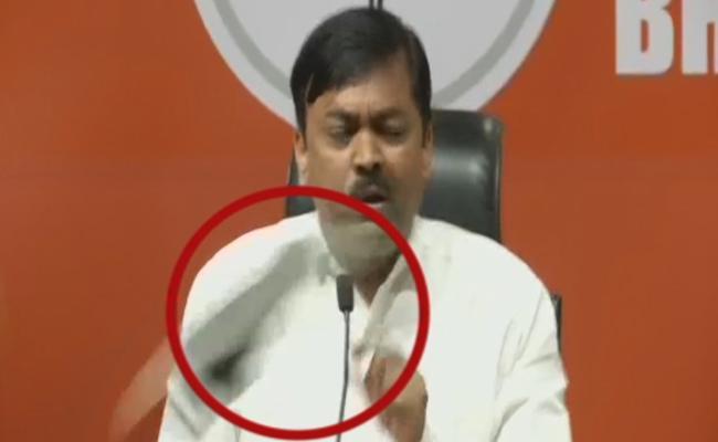Shoe Hurled At BJP MP GVL Narasimha Rao - Sakshi