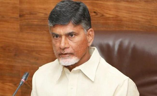 TDP Will Win In General Elections Surely Said By TDP Chief Nara Chandrababu Naidu - Sakshi