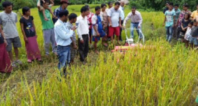 Training on Go-based farming - Sakshi