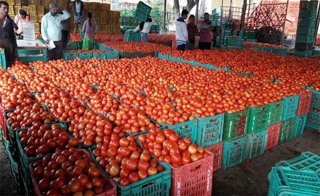 Tomato Prices Hikes in Andhra Pradesh - Sakshi