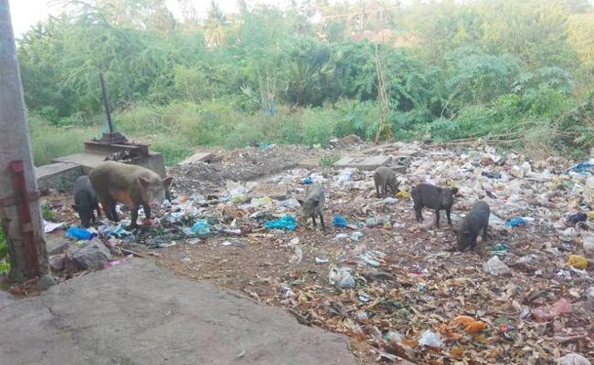 Swine Flu Case File East Godavari - Sakshi