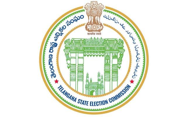 State Election Commission specifically constituted the Complaints Department - Sakshi