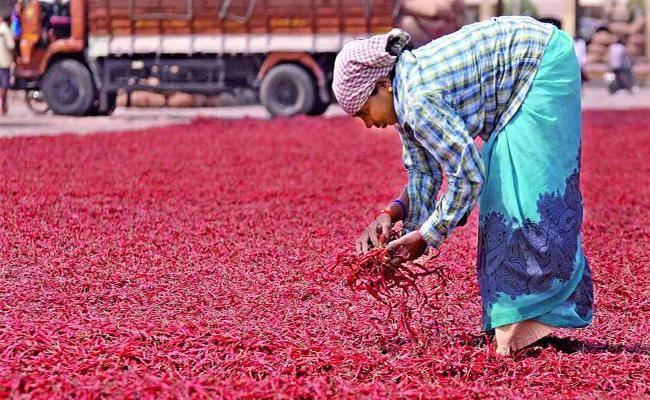 Khammam Market Yard Income Increases - Sakshi