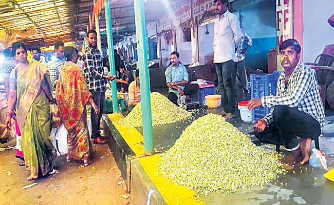 Jasmine Flower Season Starts in Hyderabad - Sakshi