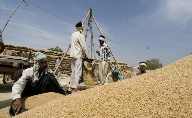 Farmers Problems With Grain Purchases Centers - Sakshi