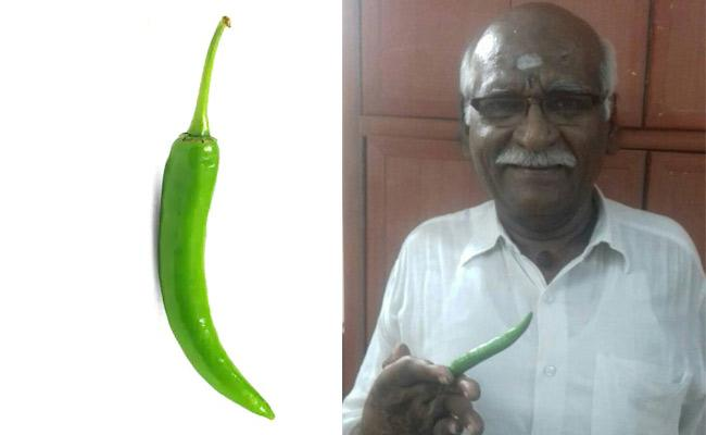 Tamil Nadu Bypoll Candidate Declares Rs 1.7 Lakh Cr cash AndRs 4 lakh cr debt - Sakshi
