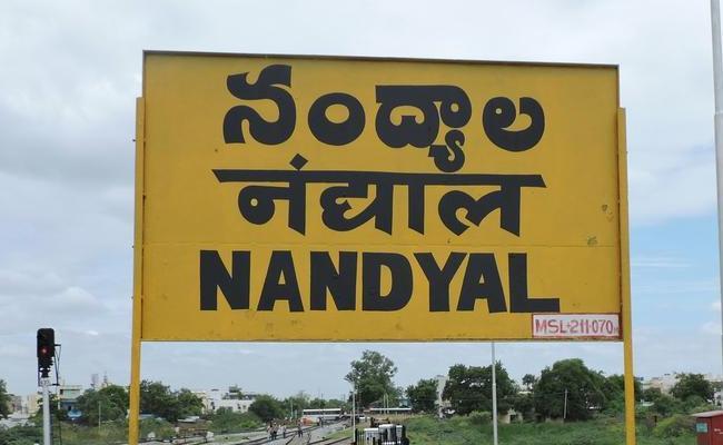 20 Independent Candidates in Nandyala - Sakshi