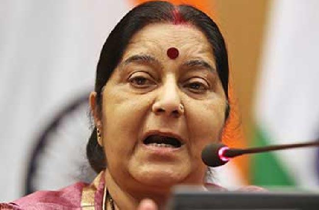 Sushma Swaraj Asks Rahul Gandhi To Maintain Decency Of Language - Sakshi