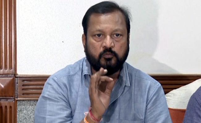 Narne Srinivasa Rao Slams Chandrababu Naidu - Sakshi