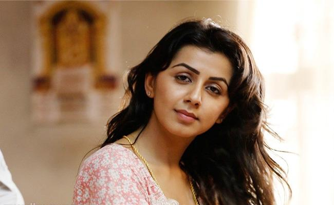 Nikki Galrani Interview in Sakshi