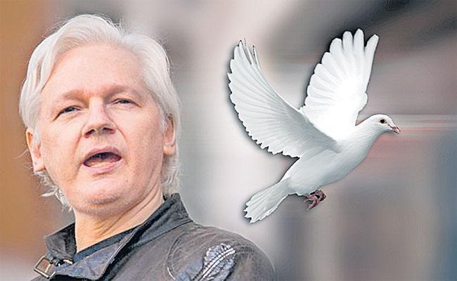 ABK Prasad Article On Julian Assange - Sakshi