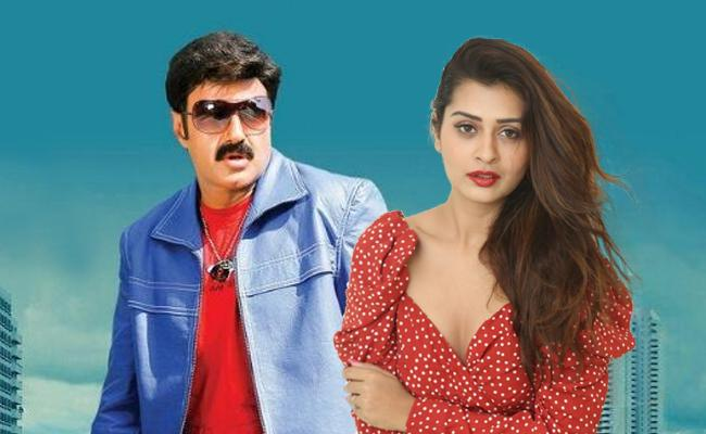 Payal Rajput Opposite Balakrishna in KS Ravikumar Film - Sakshi