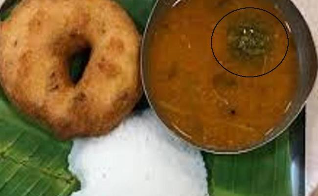 Nagpur Man Finds Lizard In Vada Sambar At Haldiram Outlet - Sakshi