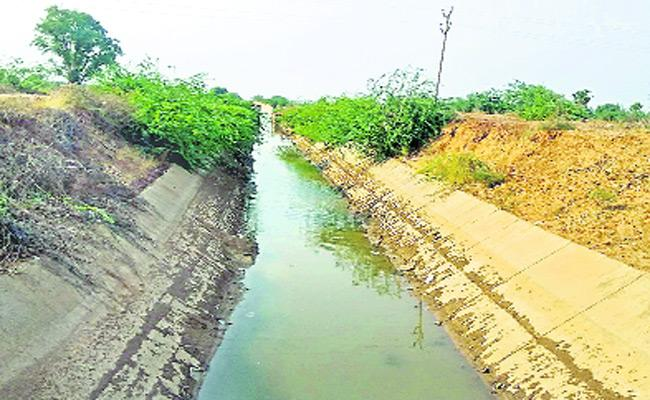 Pulivendula Farmers Dissatisfied For Not Getting Thungabhadra Dam Water - Sakshi