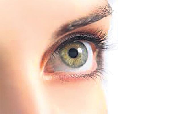 Eye Tests And Surgeries Stopped in Telangana - Sakshi