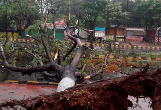 Odisha Man Lives In Toilet With Family After Cyclone Fani Destroys House - Sakshi