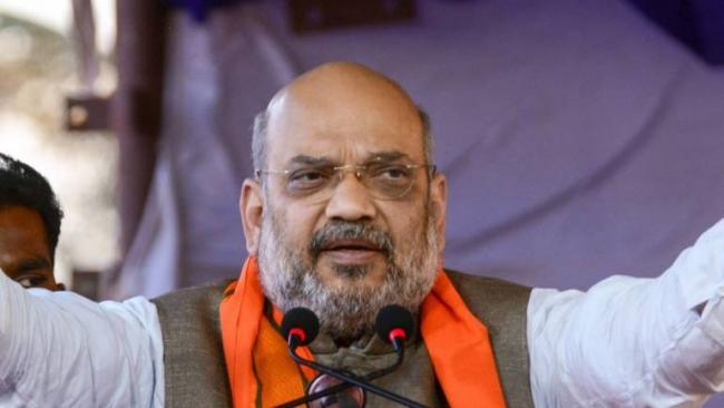 Amit Shah To Host Dinner For NDA Leaders - Sakshi