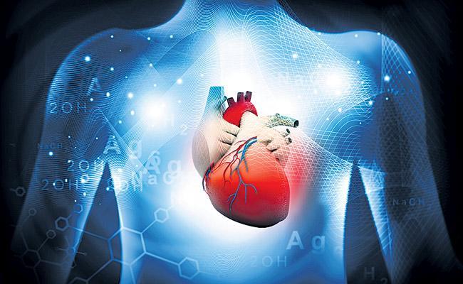 Doctors diagnose heart failure through blood test - Sakshi
