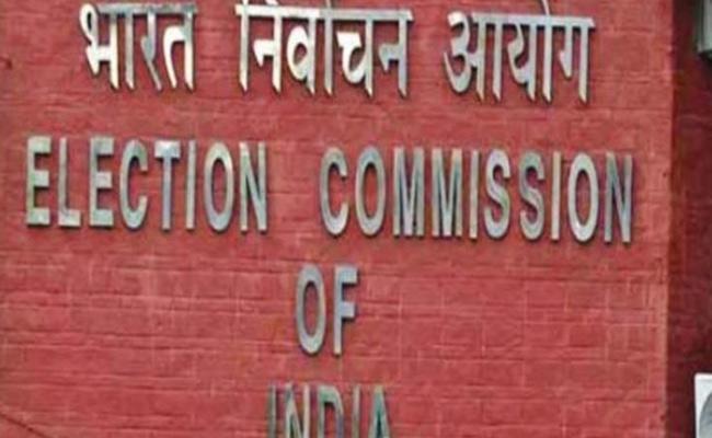 Lok Sabha Elections Counting Arrangements Nizamabad - Sakshi