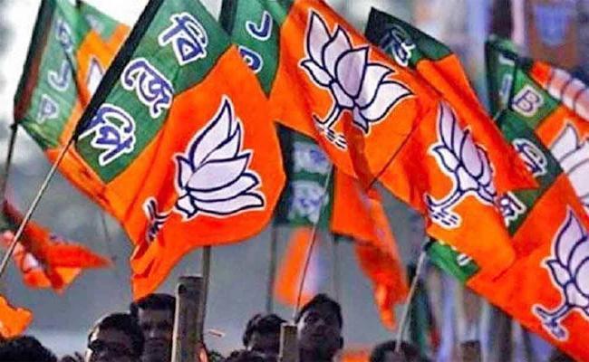BJP Clean Sweep in Karnataka - Sakshi