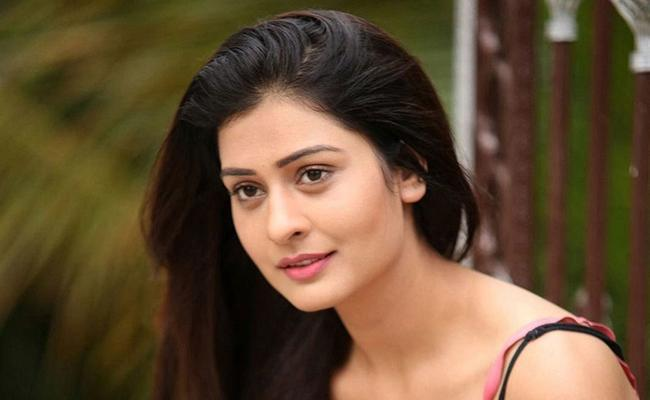I am doing movies in Venky Mama Disco Raja and RDX Love in Telugu - Sakshi