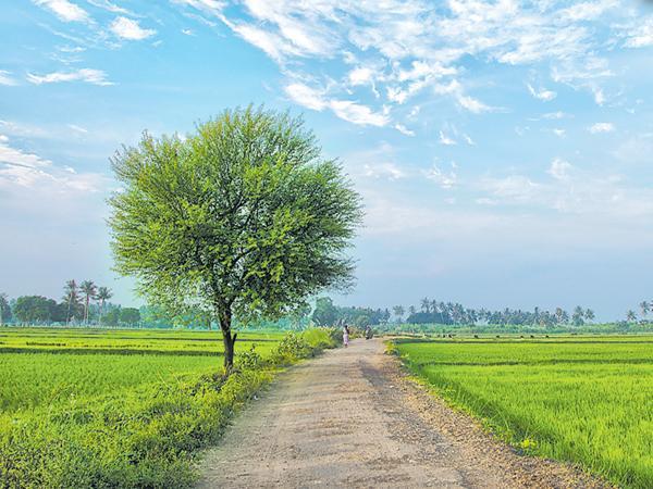 Focus On village tourism in Telangana - Sakshi