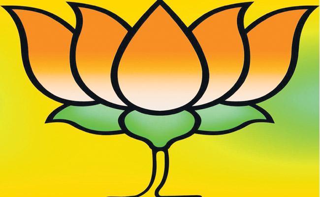 BJP MPs met with party elders in Delhi on Sunday - Sakshi