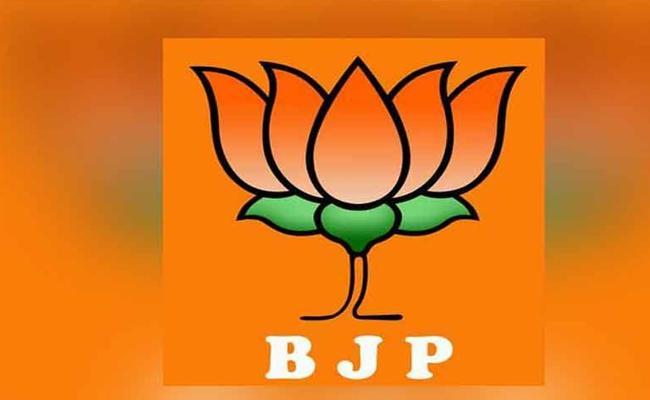 BJP Discouragement in telangana elections - Sakshi