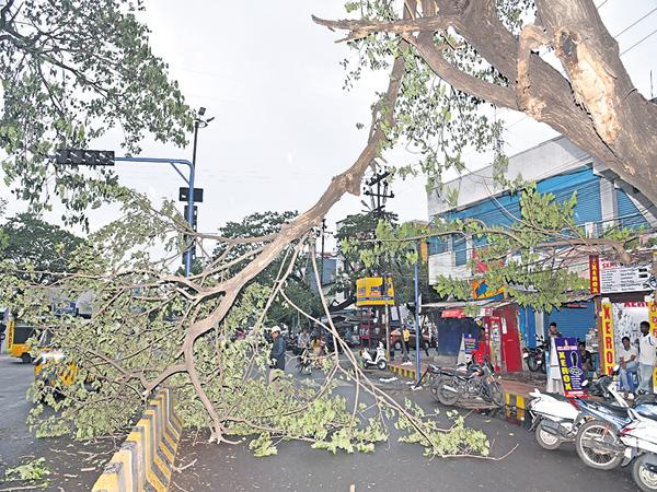 Strong Winds And Rains In Several Districts of the State With Fani Cyclone - Sakshi