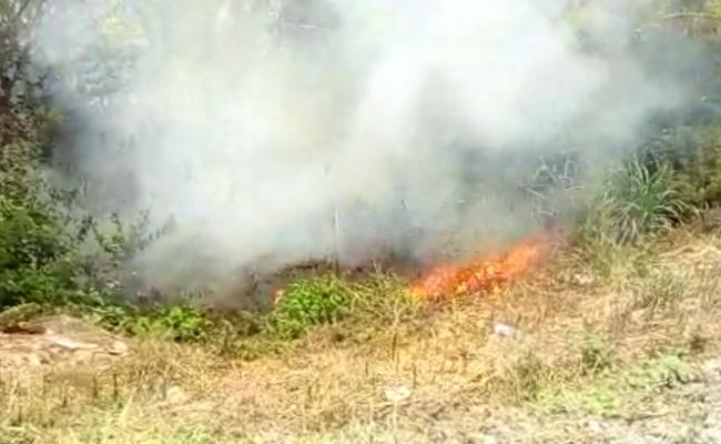 Catches Fire Near AP CM chandrababu House - Sakshi