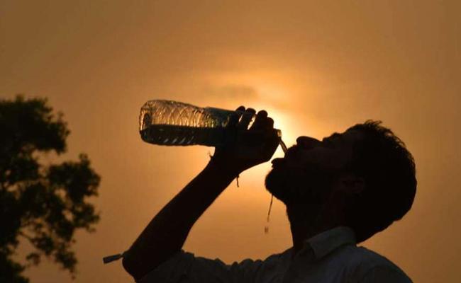 Sunstroke effect on MPTC ZPTC polls in Telangana - Sakshi
