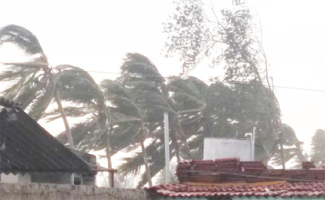 Fani Cyclone Effect on Vizianagaram Srikakulam - Sakshi