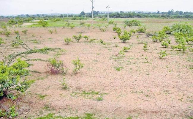 Once Again Land Records Cleansing In Telangana - Sakshi