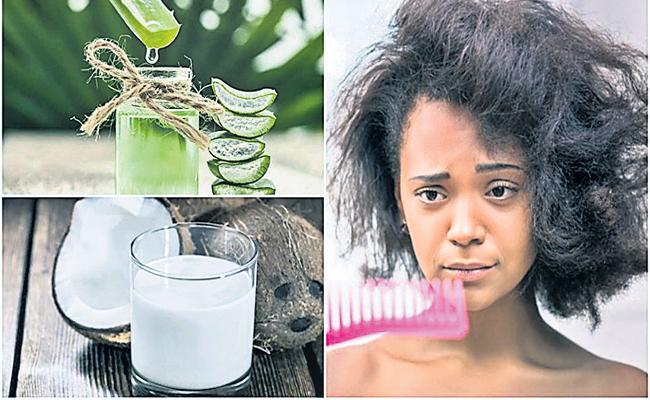 Hair Care in Summer - Sakshi