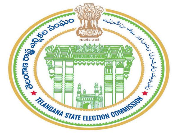 Local elections Ended As successful - Sakshi
