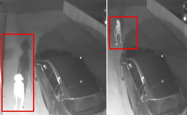 Elf Like Creature In Security Camera More Views For Bizarre Video - Sakshi