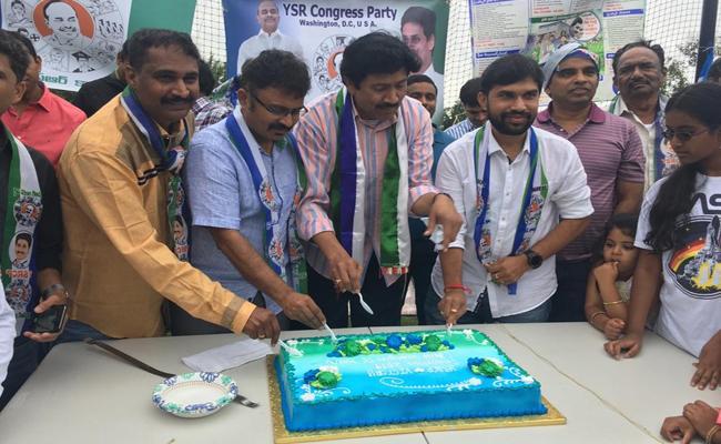 YSRCP Fans In Washington Celebrates Victory - Sakshi