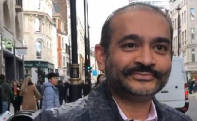 UK Court Denies Bail To Nirav Modi - Sakshi