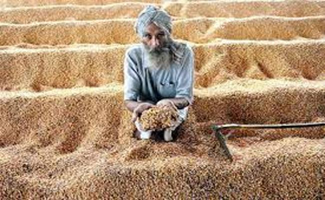 Farmers Facing Problems Due To Delay In Getting Msp - Sakshi