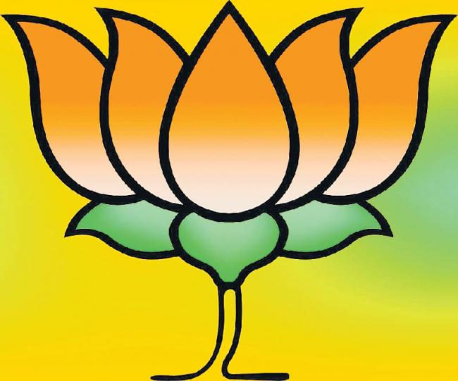 Amit Shah calls meet of BJP office bearers to elect new party chief - Sakshi