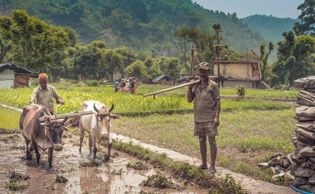 Farmers Waiting For Loans Mahabubnagar - Sakshi