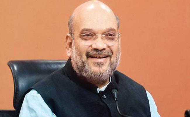 Amit Shah Meeting With Party Leaders In Delhi - Sakshi