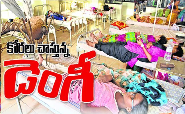 Dengue Diseases In Mahabubnagar District - Sakshi