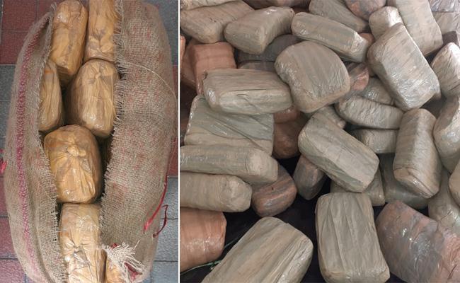 DRI Seized 944 kg Ganja In Hyderabad Outskirts - Sakshi