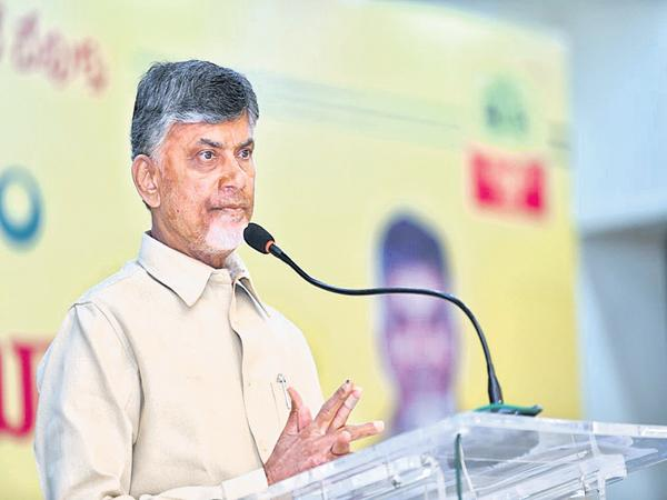 Chandrababu comments in the wide range of TDP meeting - Sakshi